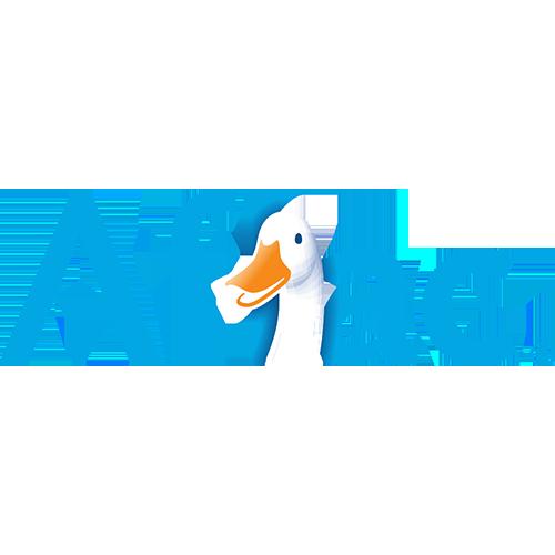 DISC-Aflac